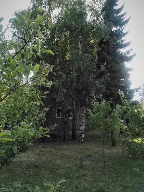Vikend kuća, Čortanovci