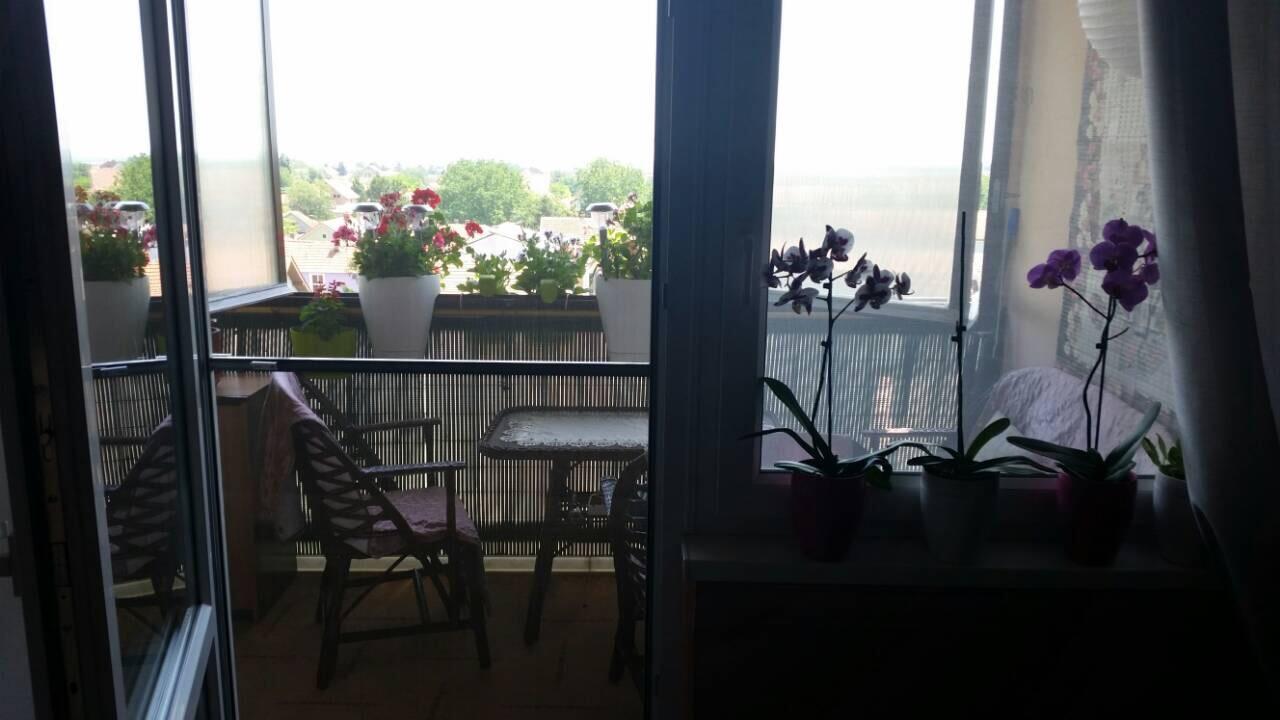 Extra renoviran stan 65 m2, IV sprat, Inđija