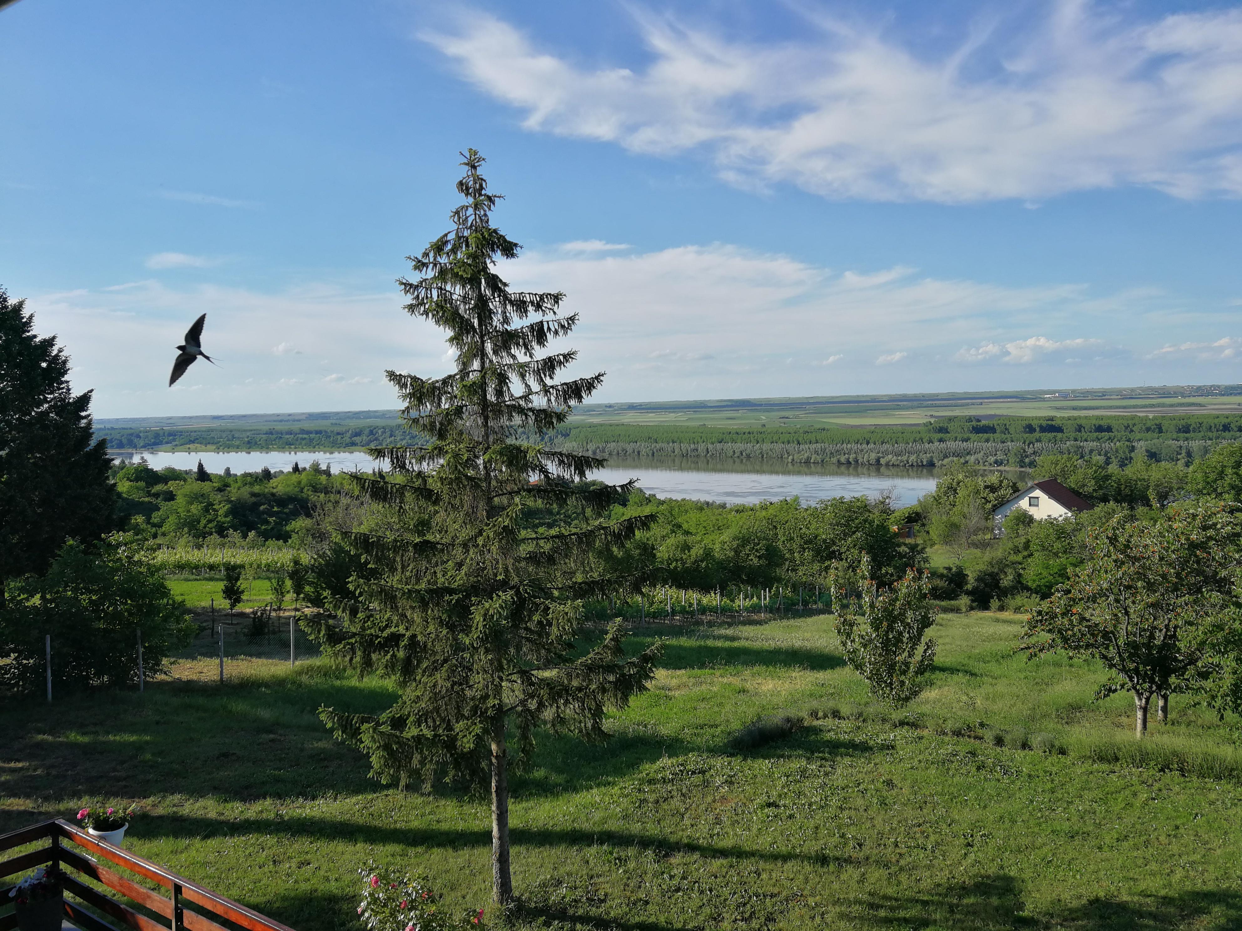 Vikendica na Dunavu