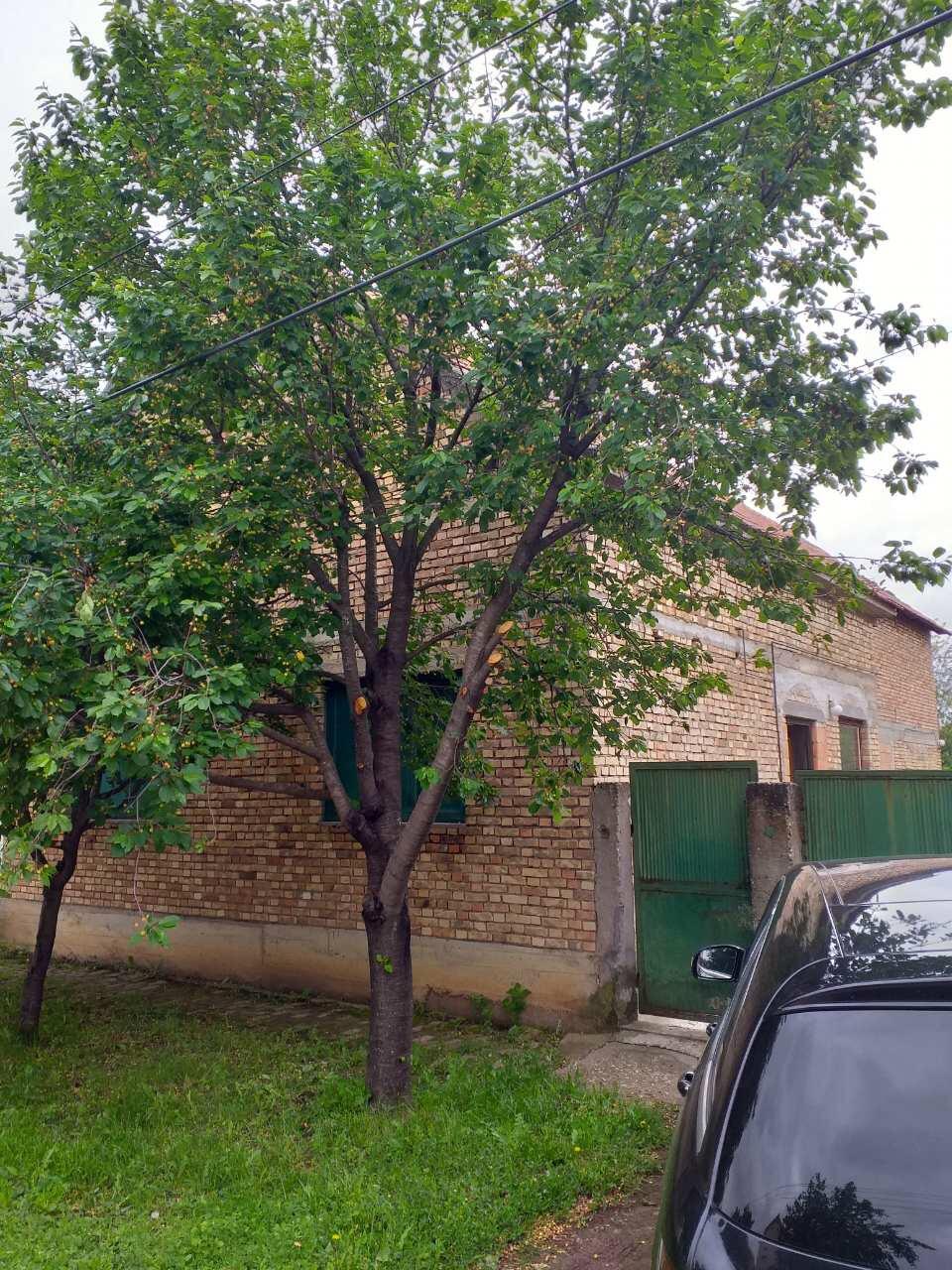 Kuća 170 m2, plac 20 ari, 6 km od Inđije
