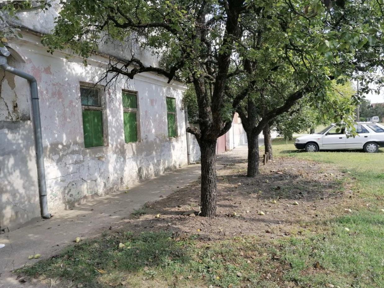Stara kuća, plac 29 ari, Novi Slankamen
