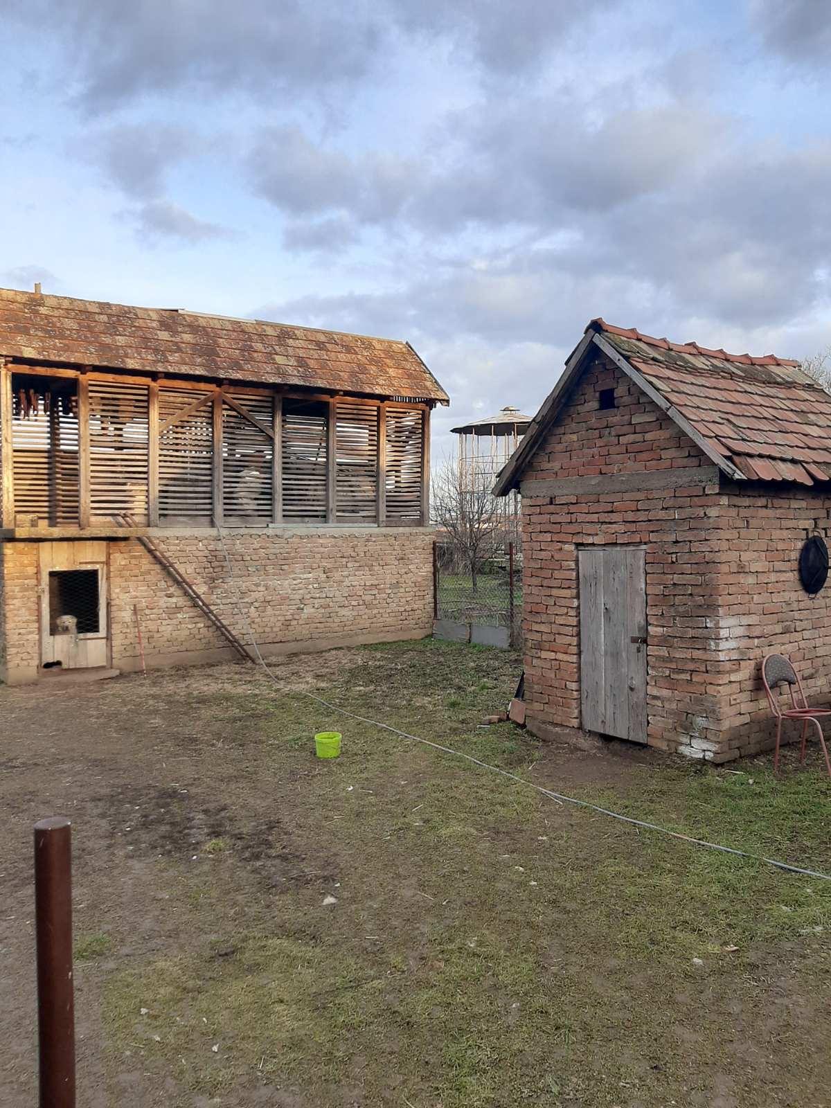 Kuća u Ljukovu plac 20 ari, voćnjak
