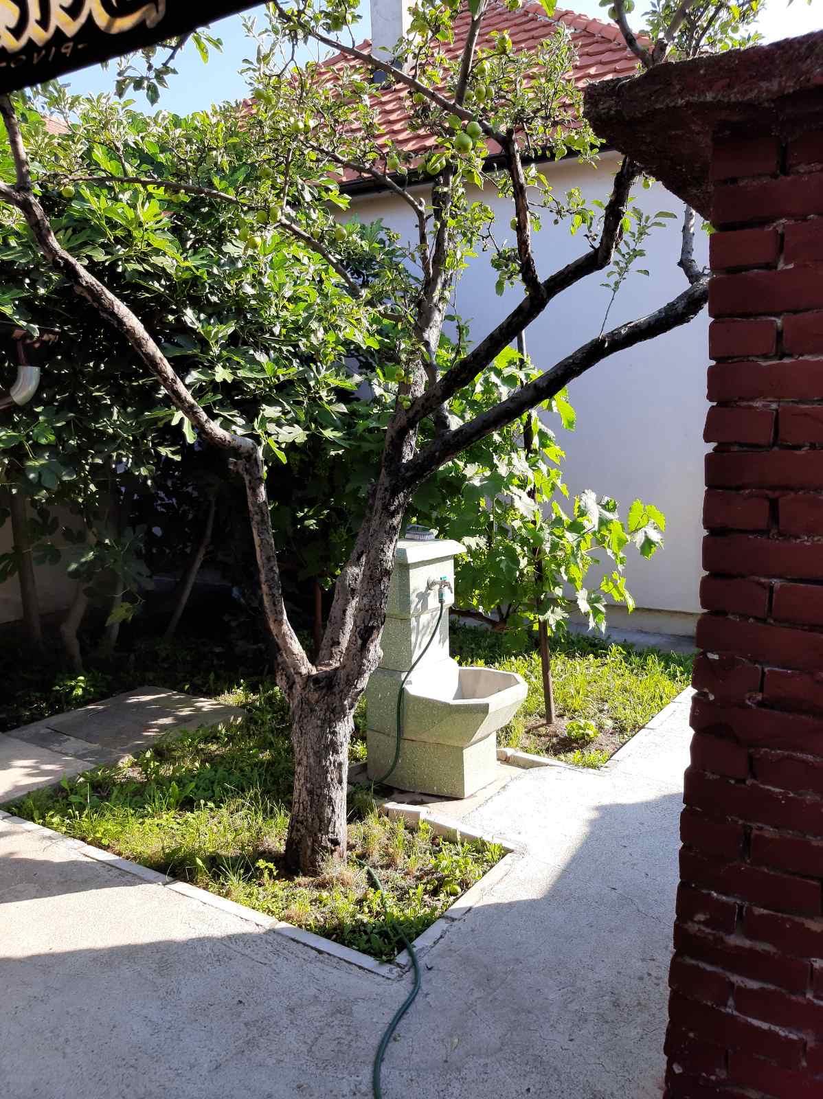 Prizemna kuća 100 m2, sređena, plac 14 ari, Batajnica
